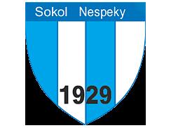 TJ Sokol Nespeky